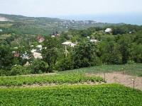 Продам земельный участок в красивейшем селе Запрудное, г.Алушта
