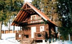 Проект деревянного дома 10-47