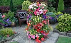 Пирамида - вертикальная клумба для цветов и пестролистных салатов.