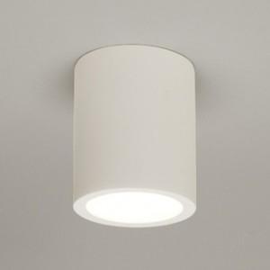 Потолочные гипсовые светильники накладные