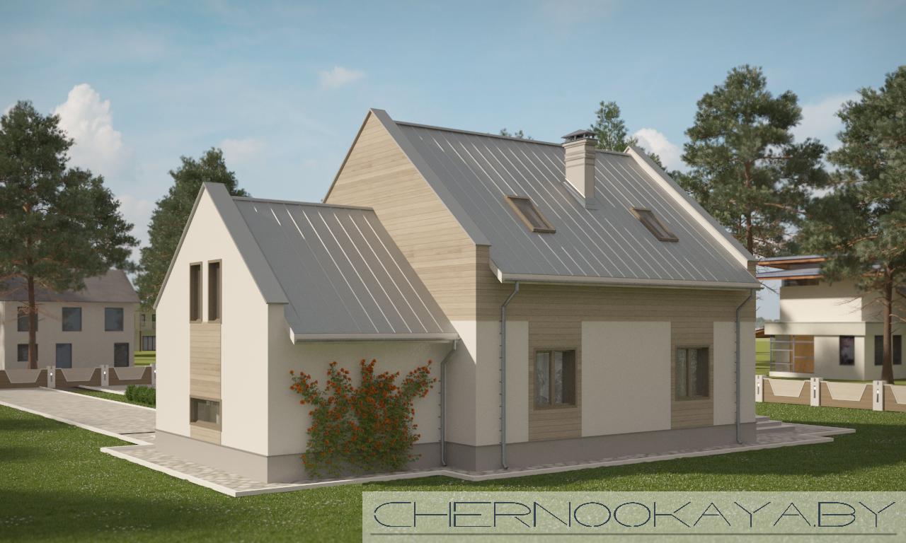 Проект дома №1561 Barn house (дом-амбар) фасад