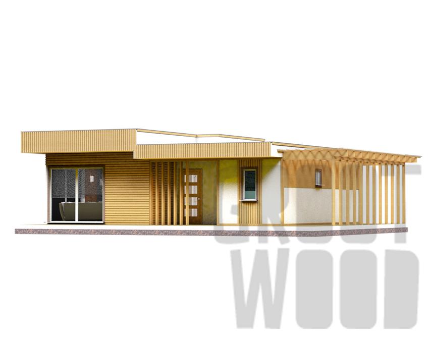 Одноэтажный современный дом 10 х 8 м, 120 кв. м. фасад