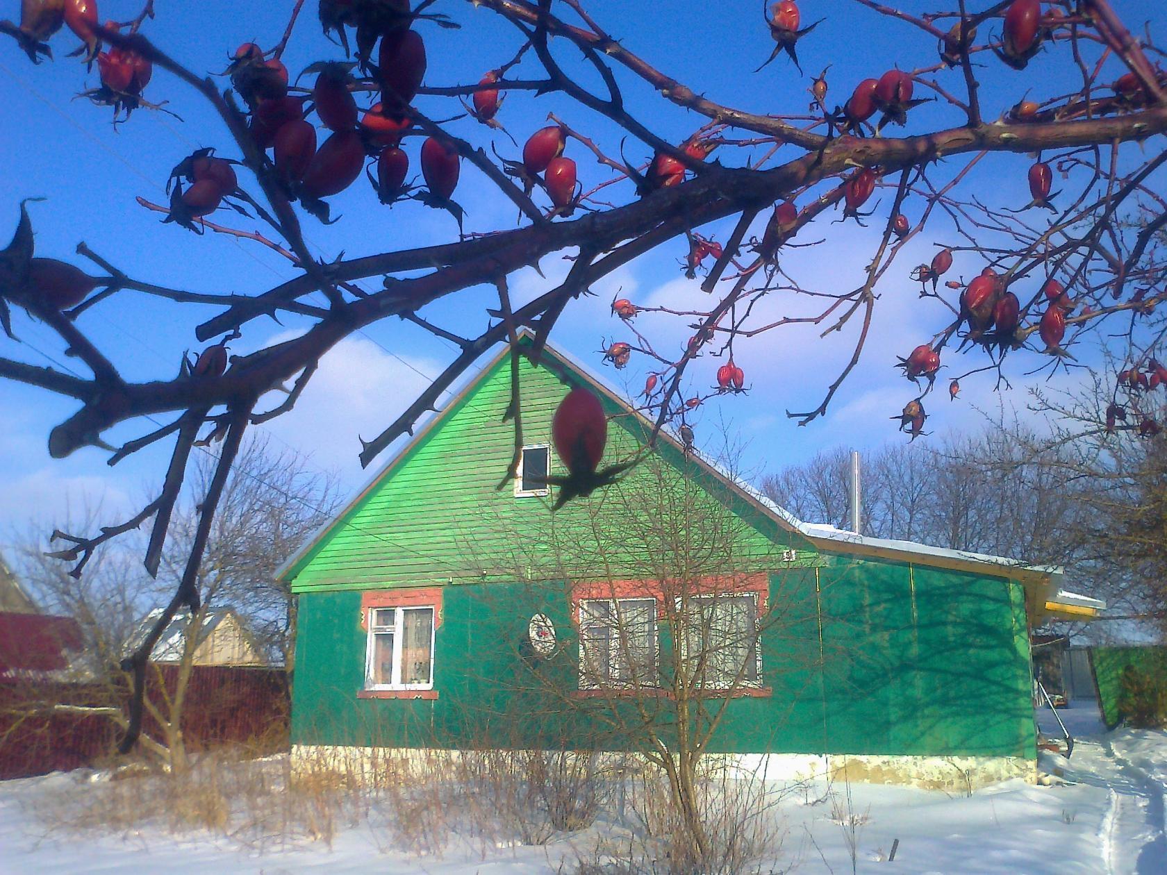 Продам дом в с.Вадинск Пензенской области